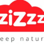 Zizzz Logo Black Friday